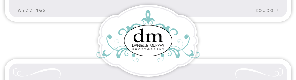 Top Michigan Wedding Photographer Danielle Murphy logo